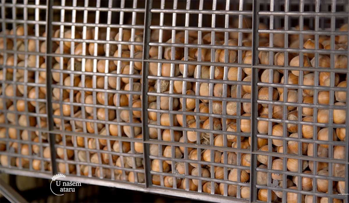 Agrosaveti---Proizvodnja-lesnika---02