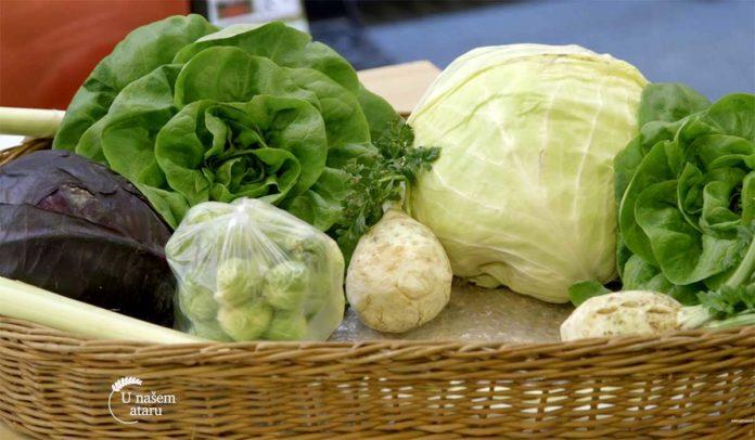 Agrosaveti---Savetovanje-Savremena-proizvodnja-povrca---02
