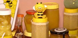 Agrosaveti---Uzgoj-pcela-i-proizvodnja-meda---02