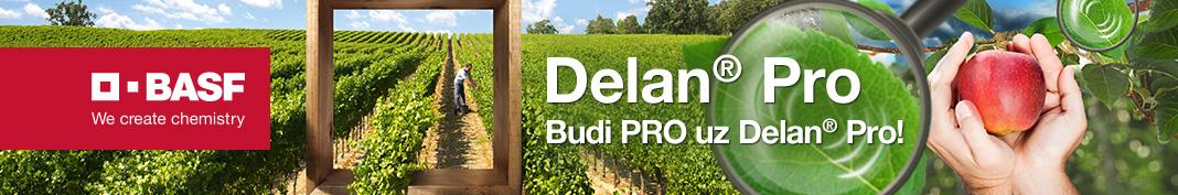 Delan Pro 1068x177px