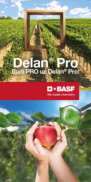 Delan Pro 300x600px