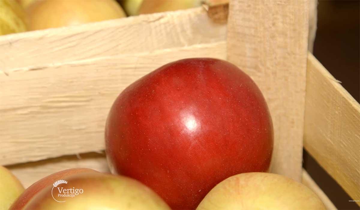 Agrosaveti---Niske-cene-voca---03