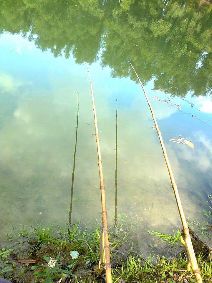 Agrosaveti---Riblja-pamet---pecanje-01