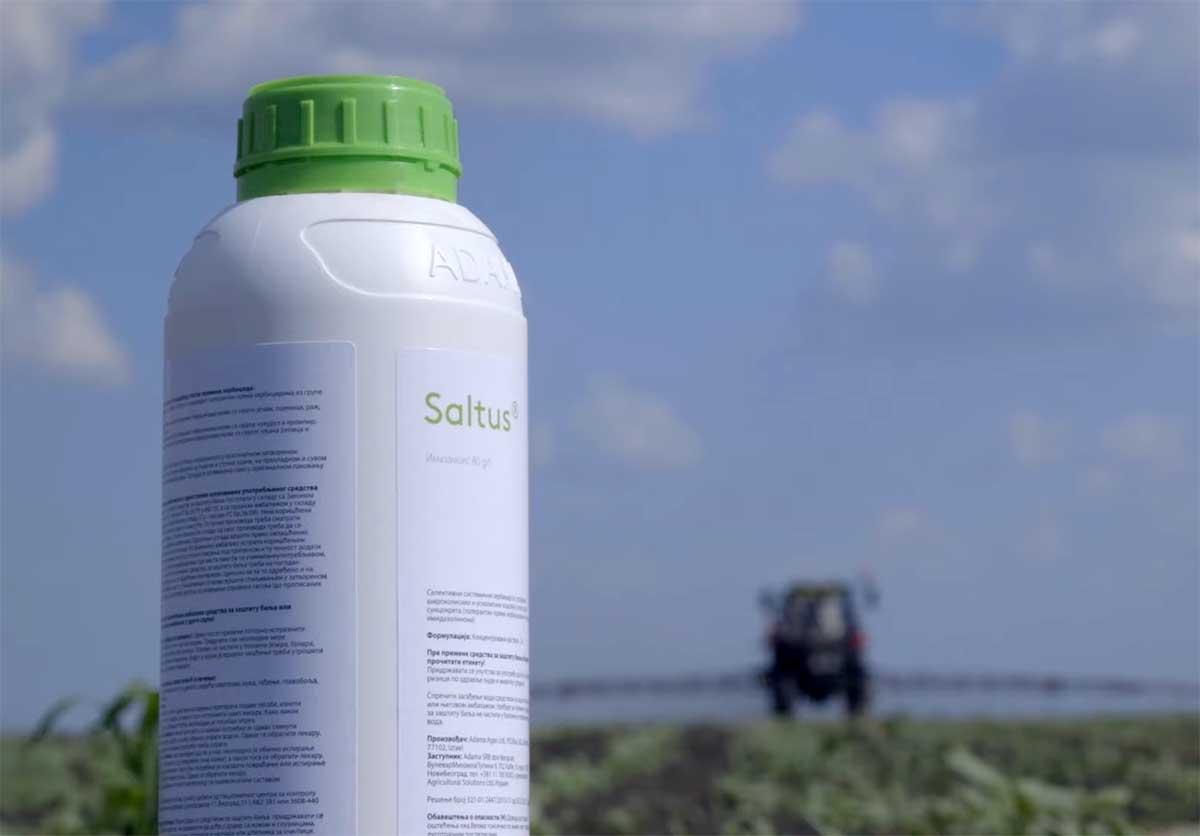 Agrosaveti---Adama---Saltus---suncokret---01