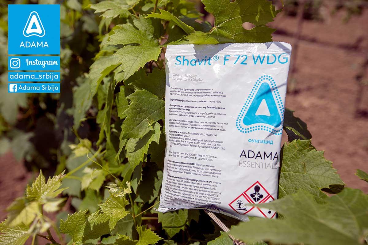 Agrosaveti---Adama---vinova-loza---plamenjaca---pepelnica---siva-trulez---Linus---Shavit-03