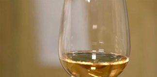 Agrosaveti---Vina---Lopusnik---vinograd---02