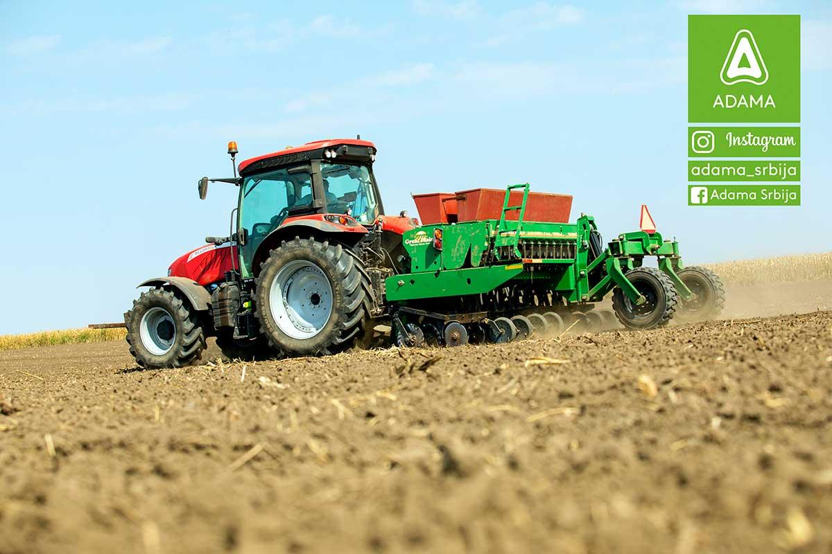 Agrosaveti---Adama---uljana-repica---jesenja-zastita---ulje---setva-uljane-repice---tehnologija-gajenja-02