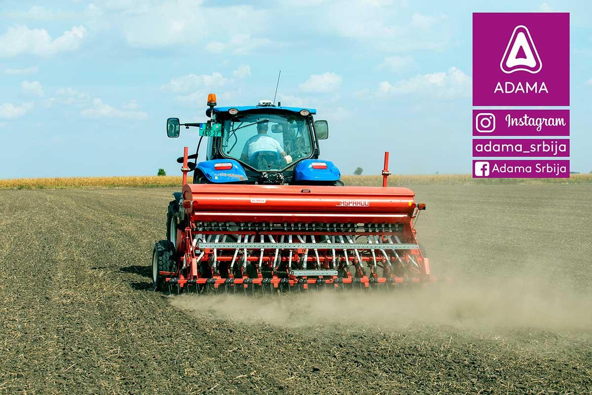 Agrosaveti---Adama---uljana-repica---jesenja-zastita---ulje---setva-uljane-repice---tehnologija-gajenja-03