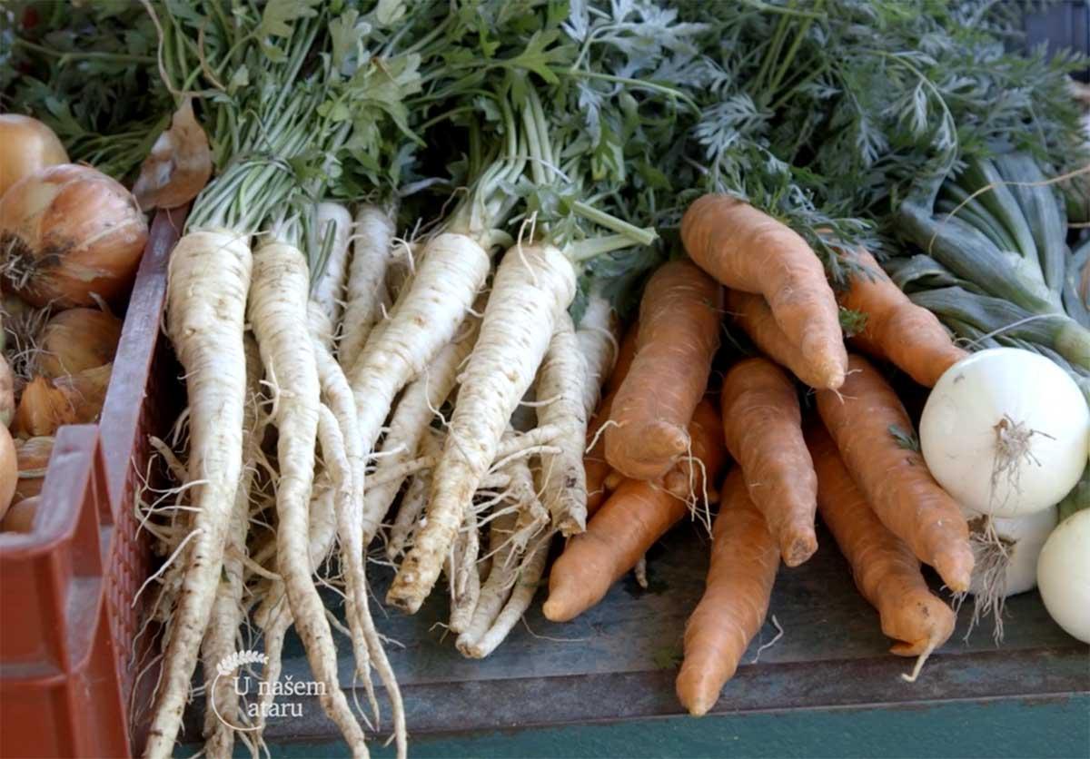 Agrosaveti---Proizvodnja-povrca---Subotica---02