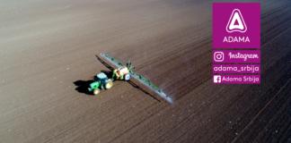 Agrosaveti - Adama - uljana repica - jesenja zastita - ulje - bolsti - lamdex - orius 02