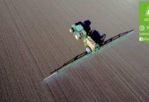 Agrosaveti---Adama---uljana-repica---jesenja-zastita---ulje---setva-uljane-repice---sultan-01