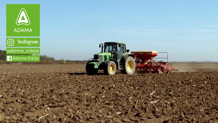 Agrosaveti---Adama---psenica---setva---gajenje---zastita---herbicid