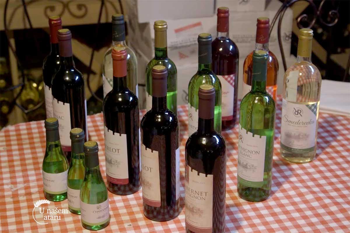 Agrosaveti---Smedervski-vinograd---04