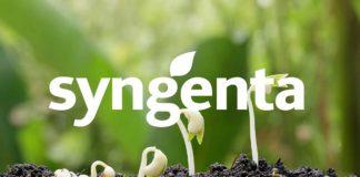 Agrosaveti---Syngenta