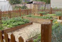 Agrosaveti---bio-basta---Zrenjanin---01