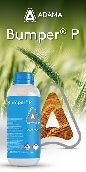 Bumper-P-Vertigo-300x600