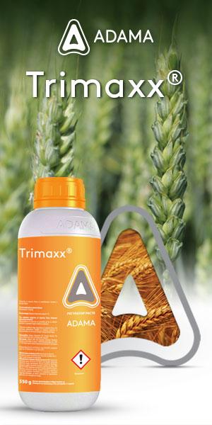 TrimaxX-Vertigo-300x600