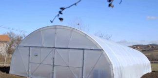 Agrosaveti---Batocina---plastenici---01