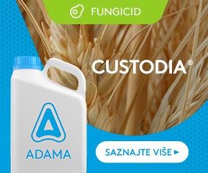 Custodia-300x250