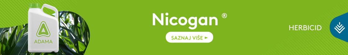 Nicogan-1120x180
