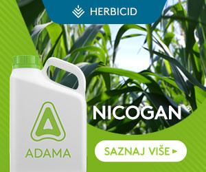 Nicogan-300x250