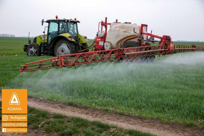 Agrosaveti---Adama---psenica---jecam---Trimaxx---Regulator-rasta---prskanje-02