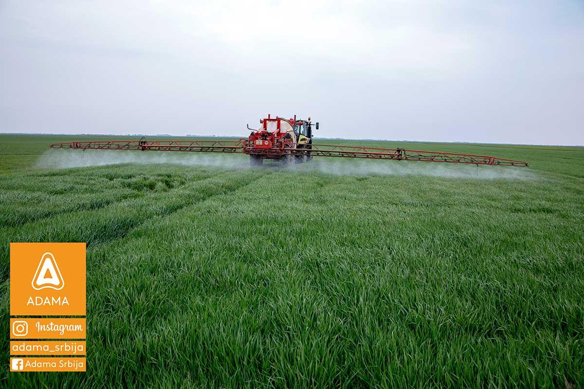 Agrosaveti---Adama---psenica---jecam---Trimaxx---Regulator-rasta---prskanje