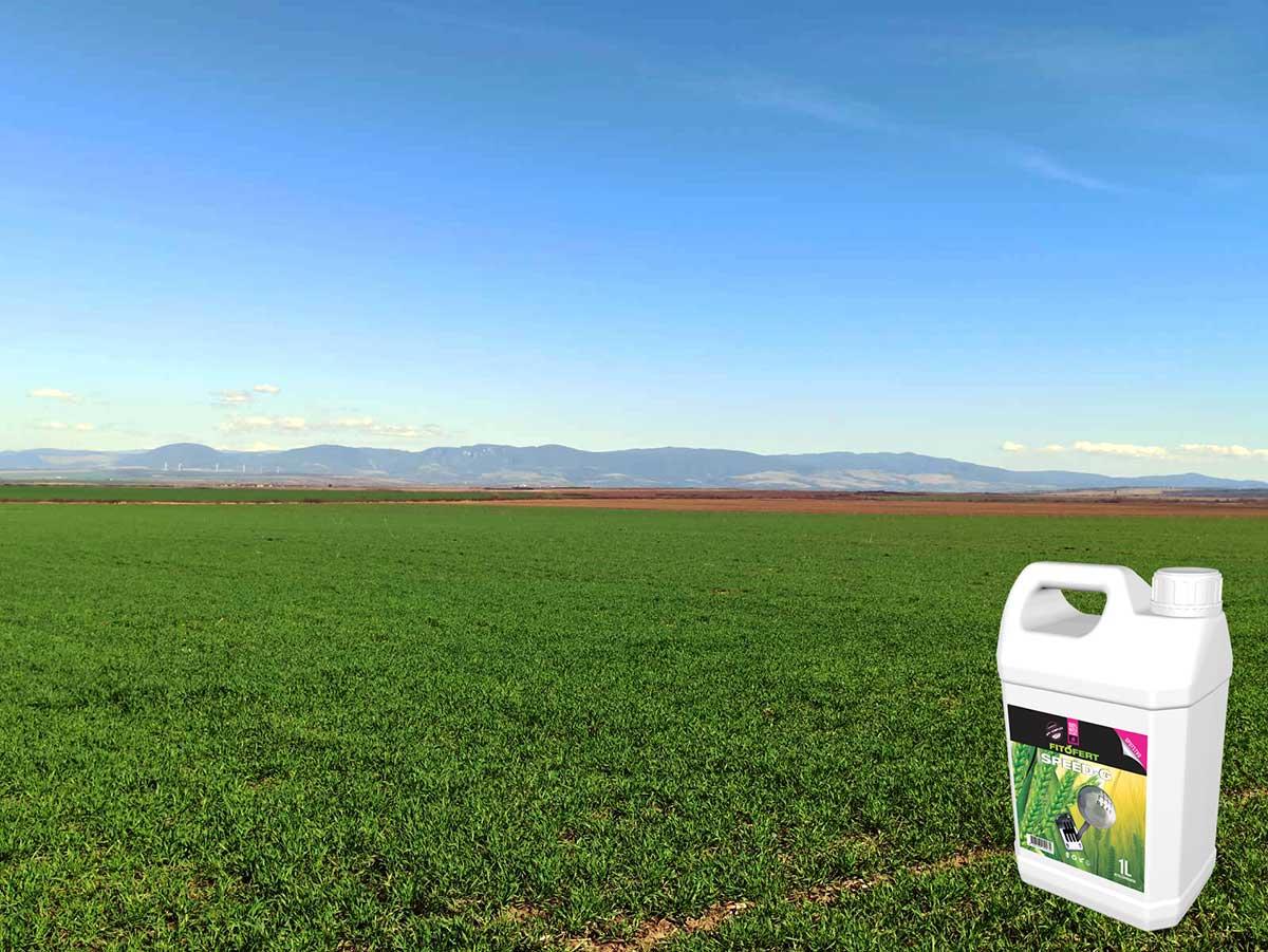 Agrosaveti---Agromarket---Fitofert---Speed-G---psenica---prolecna-prihrana-psenice-01
