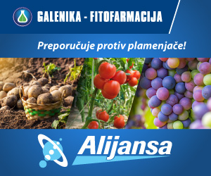alijansa-300x250px