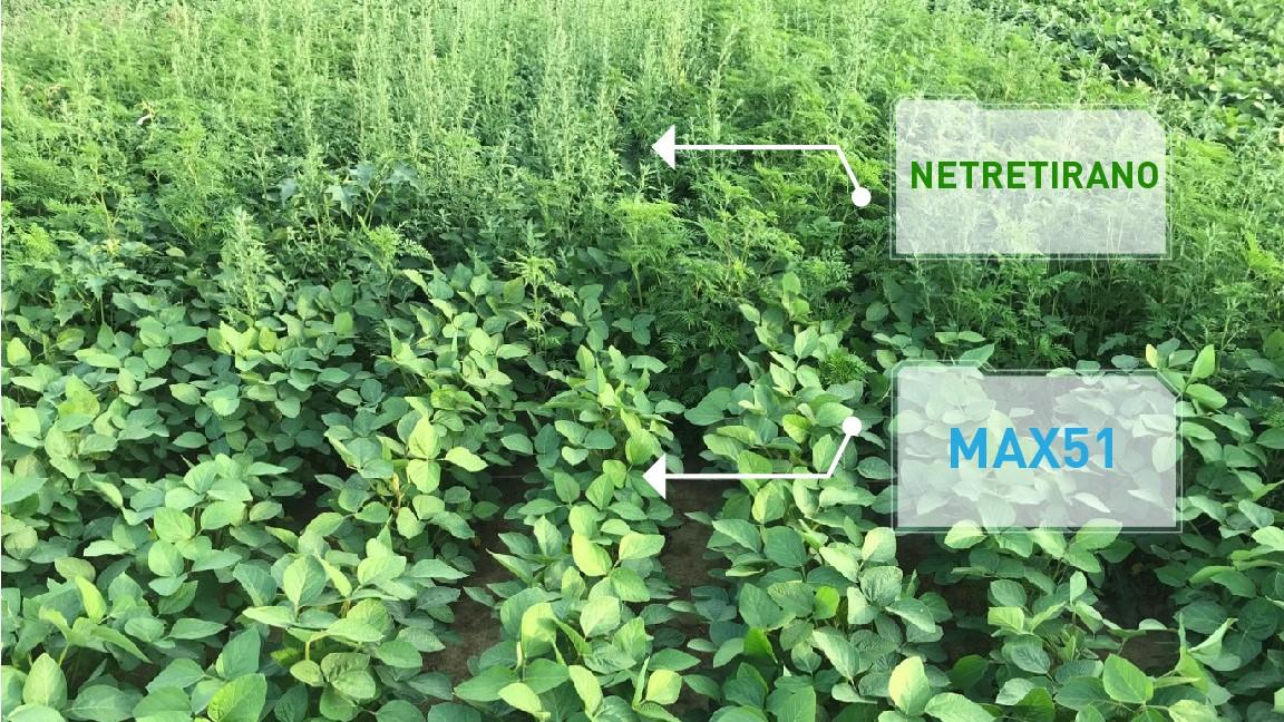 Agrosaveti - Agromarket - Max 51 - 02