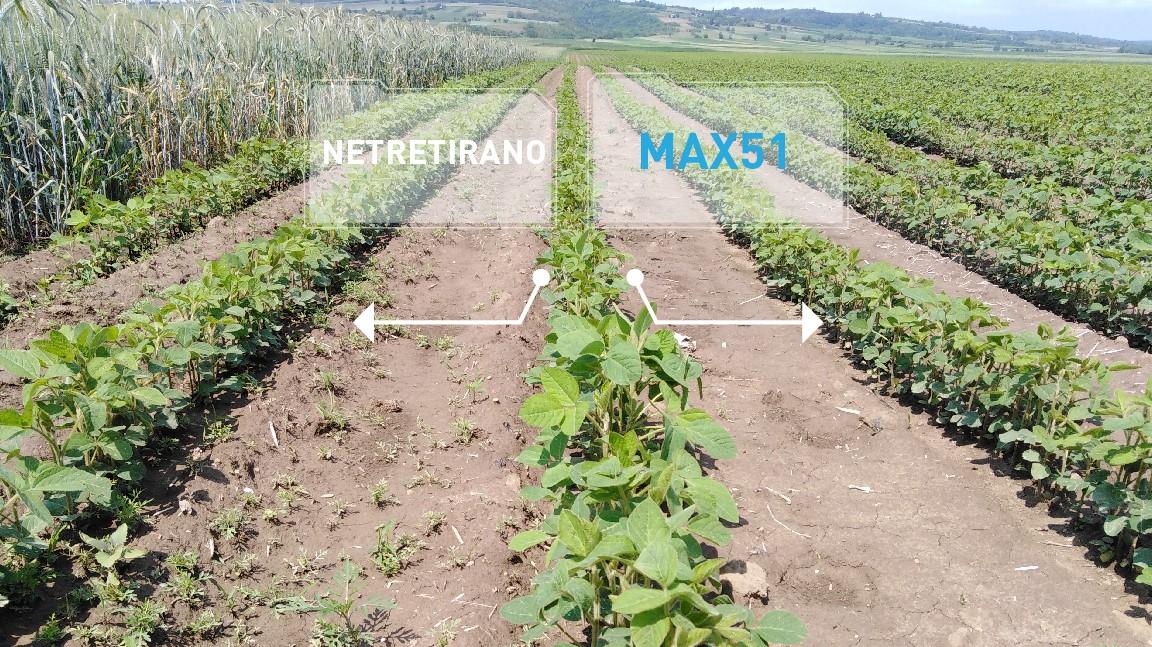 Agrosaveti - Agromarket - Max 51 - 03
