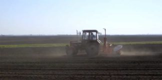 Agrosaveti---prolecna-setva---01