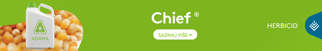 Chief-1120x180
