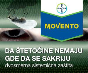 Web-baner-Movento-Vertigo-300x250-V01