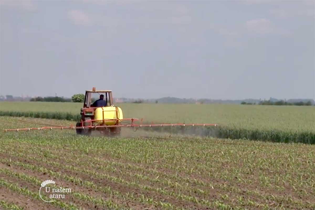 Agrosaveti---prvomajske-kise---ratarstvo---03