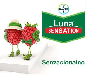 Web-baner-Luna-Sensation-Vertigo-300x250-V01