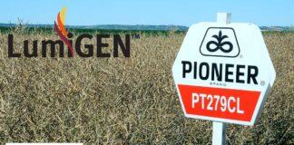 Agrosaveti---Lumigen---Corteva---uljana-repica---05