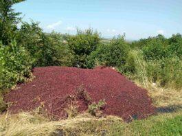 Agrosaveti---deponija-visanja---01