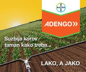 Web baner Adengo Vertigo 300x250