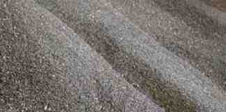 Agrosaveti---ratar---povrtarstvo---cena---suncokret---01