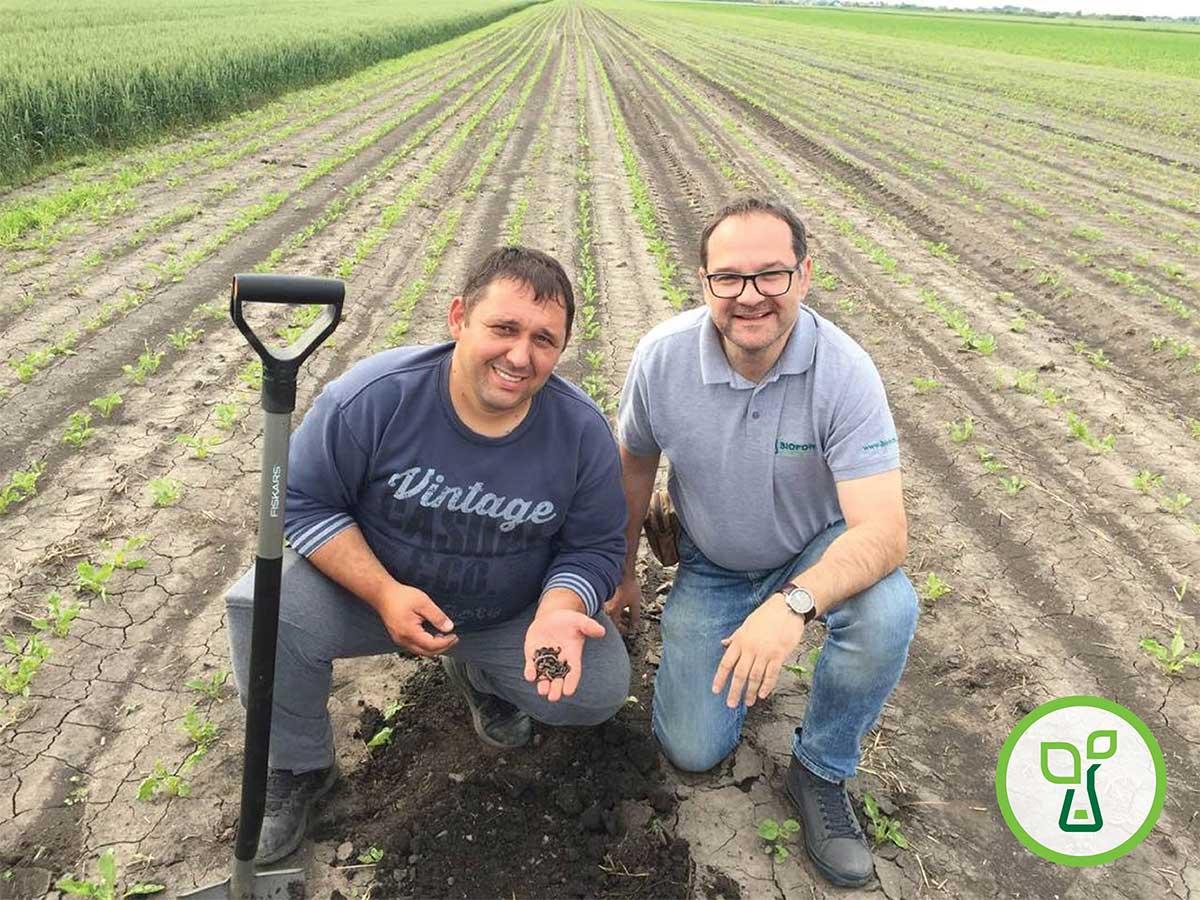 Agrosaveti---Bioplug--Biofor-System---2