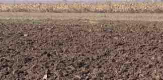 Agrosaveti---ratarstvo---soja---podrivanje---03