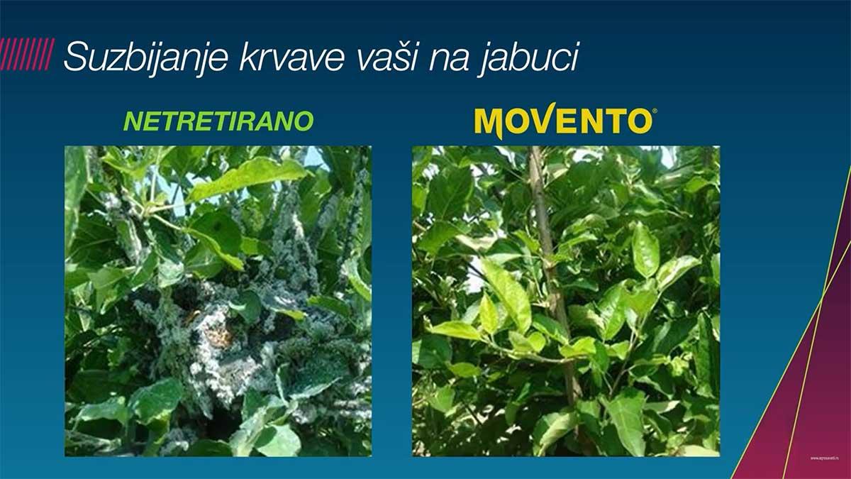 Agrosaveti---Bayer---suzbijanje-krvave-vasi---03