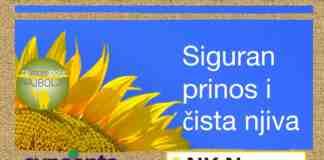Agrosaveti---Syngenta---NK-Neoma---02