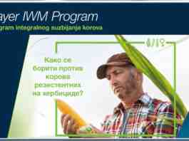 Agrosaveti Bayer rezistentnost korova ALS 03
