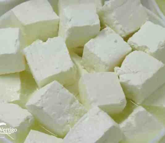 Agrosaveti Mala mlekara Janic 02