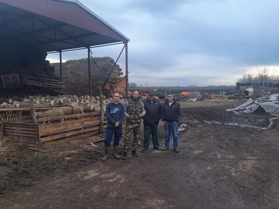 Agrosaveti jagnjad za Kosovo 01