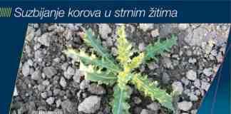Agrosaveti Bayer suzbijanje korova u strnim zitima 01