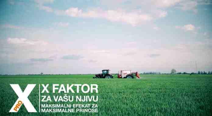 Agrosaveti Bayer zastita lista zastavicara psenica ASCRA Xpro 03