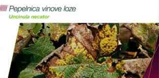 Agrosaveti Bayer suzbijanje pepelnice vnove loze Luna Max 01